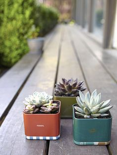 Happy Earth Day from #Fossil! We're celebrating today by turning some of our favorite Fossil tins into upcycled succulent planters. Go over to the Fossil blog to fiind the #diy.