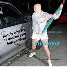 Aquarius Traits, Aquarius Quotes, Zodiac Sign Traits, Aquarius Woman, Capricorn And Aquarius, Zodiac Signs Horoscope, Zodiac Memes, Zodiac Star Signs, Aquarius Funny