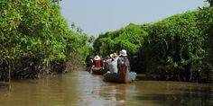 Canoeing through the flooded forests of Kompong Phluk, Cambodia