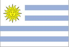 Country Flags: Uruguay Flag