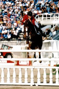 Great jump filler. Ludger Beerbaum & PS Priamos Gold Medal (Team) World Equestrian Games '98