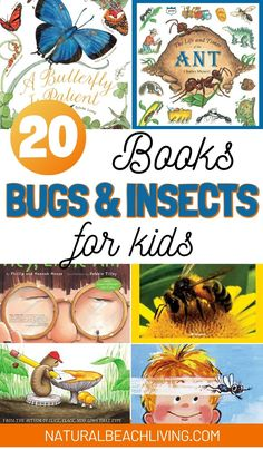 looking for great Bug and Insect books you should check out these! There are insect books for kids that would be great additions to your insect and bugs theme or unit study. They're so much fun and the kids will love them. Social Studies Activities, Science Activities For Kids, Preschool Books, Preschool Themes, Teaching Science, Insects For Kids, Bugs And Insects, The Very Busy Spider, Bee Facts