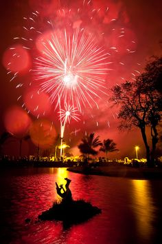 4th of July in Hilo, Hawai`i (photograph by D. Hahn) me encanta....un ambiente muy tropical crean esos fuegos artificiales