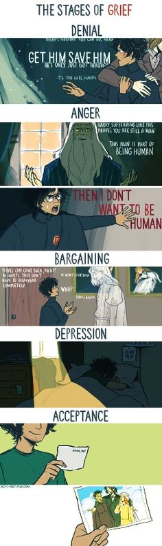 The stages of grief - Sirius's death