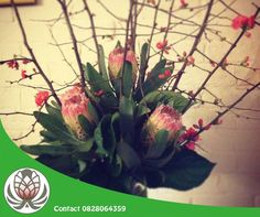 Brighten up your office this festive season with a display of breathtaking proteas from Bofberg Flowers. Festive, Display, Seasons, Lifestyle, Flowers, Plants, Products, Floor Space, Billboard