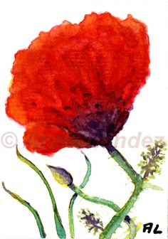 ACEO Orginal Watercolour Poppies by Anne Londez / by annelondez1, $9.00