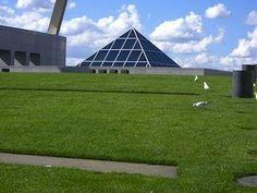 Sede del parlamento australiano - Canberra     Forse il primo e più riuscito tetto verde della storia. La copertura del Parlamento a Canberra fu realizzata nel 1988