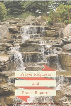 Check out the new atea of our blog for Prayer Requests and Praise Reports