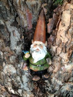 Name the gnome for me? Read, then name!