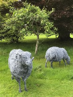 Sheep, Addition Activities, Sculptures, You Are The World, Chicken Wire, Steel Mesh, Wire Mesh, Source Of Inspiration, Fondant