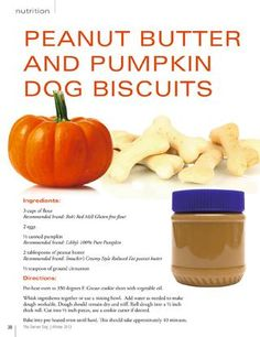 Homemade pumpkin dog biscuits.