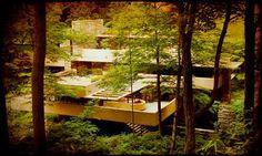 La Casa de la Cascada de Frank Lloyd Whrite , obra icono de este prestigioso arquitecto del siglo pasado