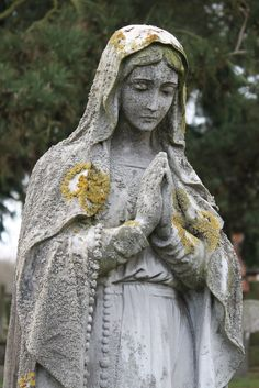 Hail Mary, full of grace, the Lord is with thee. Blessed art thou amongst women, and blessed is the fruit of your womb, Jesus. Holy Mary, Mother of God, pray for us sinners now and at the hour of our death. Amen.