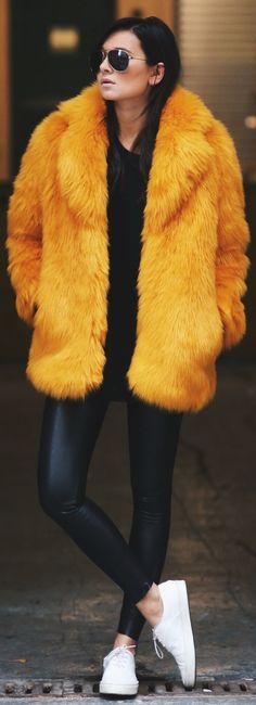 Color(faux) Fur