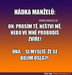 Hádka manželů: Funny Pins, Man Humor, Funny People, Motto, Funny Jokes, Haha, Comedy, Funny Pictures, Entertaining