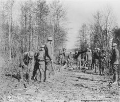 """""""The March 15 1918 — The section is building its own roads now to avoid being shelled. Twelve of us worked all afternoon on a 3 Km piste from Moscou post to the battery road 1 Km from Sapinière. It..."""