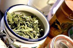 Garden herbs for tea