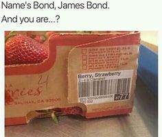 Memes Humor, Humor Quotes, James Bond, Funny Images, Funny Photos, Funniest Pictures, Funny Texts, Funny Jokes, Image Gag