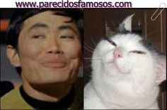 Parecidos con famosos: George Takei con gato