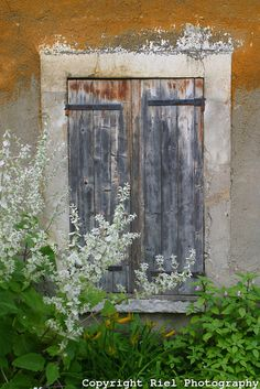 Giverny, France. Monet's shutters