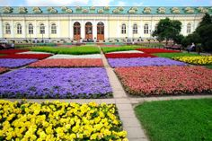 Discover Russia and the Baltics with this international program through Walden University. #Education #InternationalPrograms #Laureate #Walden #Russia