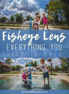 Fisheye Lens: Everything You Need to Know, what lens to buy, fish eye lens photography, photography tips