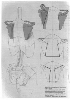 gottfried-bammesdiegestaltdesmenschenanatomyampvisualarts33-1-638.jpg (638×931)
