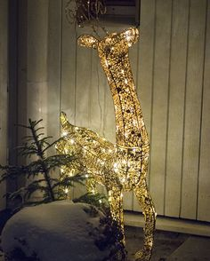 Havupallo - Kohti Joulua -joulublogi