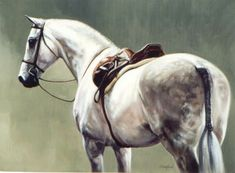 Shades of Grey by Janet Crawford - Horse Art Print Janet Crawford - Art Prints - By Janet Crawford at Horse and Hound Gallery Horse Oil Painting, Horse Artwork, Animal Paintings, Horse Paintings, Horse Drawings, Vintage Horse, Mural Art, Tile Murals, Equine Art