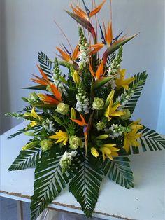 Flores esterlicia