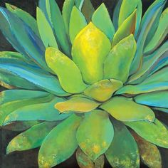 """$90 - 35x35"""" - Portfolio 'Agave' Large Printed Canvas Wall Art - Overstock™ Shopping - Top Rated Canvas"""