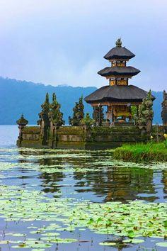 Bali, Shaklee top achiever trip 2014
