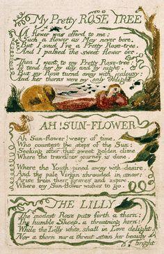 Robert Kiyosaki, Blake Poetry, William Blake Poems, Art Romantique, Songs Of Innocence, Quotes Dream, English Poets, Rose Trees, Short Poems