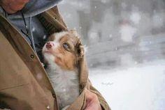 D'aww!! Cute!!