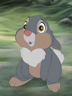 The perfect Thumper Blinking Animated GIF for your conversation. Discover and Share the best GIFs on Tenor. Bambi Disney, Disney Pixar, Walt Disney, Cute Disney, Disney Cartoons, Disney Art, Disney Movies, Disney Magic, Cartoon Gifs