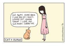 Living with a cat (cat vs human) Cute Cats, Funny Cats, Funny Animals, Cute Animals, Animal Funnies, Crazy Cat Lady, Crazy Cats, Cat Vs Human, Cat Boarding