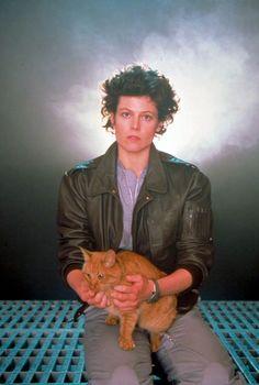 Ellen Ripley (Sigourney Weaver) and Jones. Joint number one on my Badass Women list. and cats. Aliens 1986, Aliens Movie, Alien Film, Celebrities With Cats, Celebs, Ellen Ripley, Sigourney Weaver, Cat People, Animation