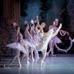 Kristina Shapran as Medora and corps de ballet Mikhailovsky in Le ... 50742922583