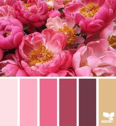 Flora Dreams Design Seeds, Colour Pallette, Color Combos, Colour Trends, Colour Colour, Peony Colors, Color Schemes Design, Color Of Life, Color Inspiration