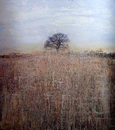 the colour of ideas: Kurt Jackson: The Trees of Cornwall