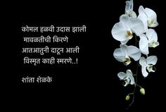 Marathi Poems, Marathi Calligraphy, Artist Quotes, Amai, Love Poems, Poetry Quotes, Beautiful Words, Relationship Quotes, Qoutes