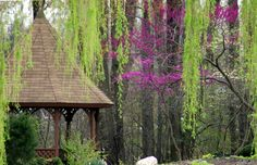 """Michael Rays """" Gazebo """" prints and greeting cards available at http://fineartamerica.com/profiles/3-michael-ray.html"""
