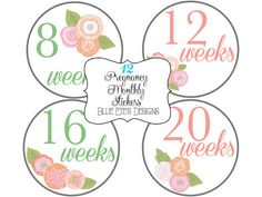 Pregnancy Belly Stickers, Pregnancy Stickers, Pattern Designed, Pink and Blue on Etsy, $12.50