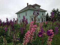 Abandoned house, Prince Edward Island