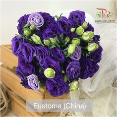 Deep purple is a very common color for Stock flowers, and it's ideal for formal ceremonies like weddings••洋桔梗的花语是富于感情,宽容,不变的爱只给你 Modern Meaning, Symbols, Vegetables, Icons, Vegetable Recipes