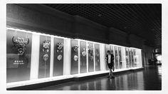 Shanghai Museum . . . . . . . . . . . . . . .  #selfie #korean #self #photo #photography #korea #man #cool #daily #face #follow #fff #like #followforfollow #선팔 #맞팔 #데일리 #셀피 #셀카 #셀스타그램 #중국 #여행 #상하이 #상해 #china #travel http://tipsrazzi.com/ipost/1508127231086782288/?code=BTt8bntBWdQ