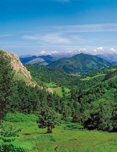 Asturias. Cangas de Onis. SRT ©Foto Juanjo Arrojo    http://pexan.acnrep.com. España.  Spain