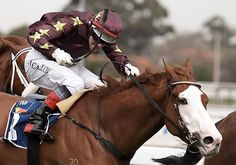 Noel Callow on Apache Cat, Caulfield 16 September 2006    Apache Cat's bold face markings are likely caused by splash