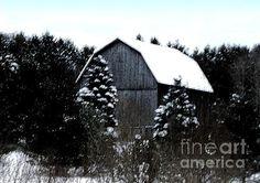 Leelanau Barn In Winter (Desiree Paquette)