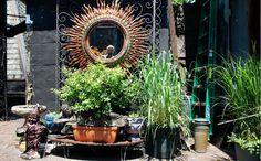 Urban Garden Alyssa Hopp: Gerald DeCock